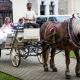 Svatba Hluboká nad Vltavou  - Svatba na klíč  - Svatba bez starostí - Svatební koordinátorka - Svatba na míru